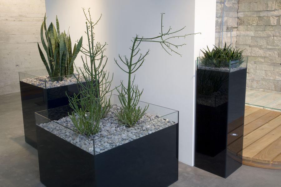 Glasfinder glasarten einfachglas keller glas for Pflanzen im glas